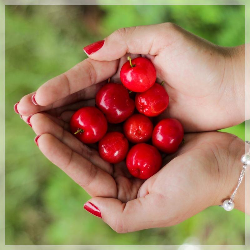 cherries-1082136_1920.jpg